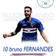 10 Fernandes