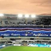 La coreografia blucerchiata allo stadio Bentegodi di Verona nello scorso campionato.